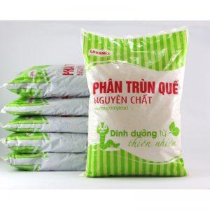 phan-trun-que-800x800