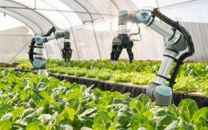 Công nghệ 5G sẽ cách mạng hóa ngành nông nghiệp như thế nào?