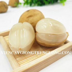 Bòn-bon-Thái-vinfruits.com-4